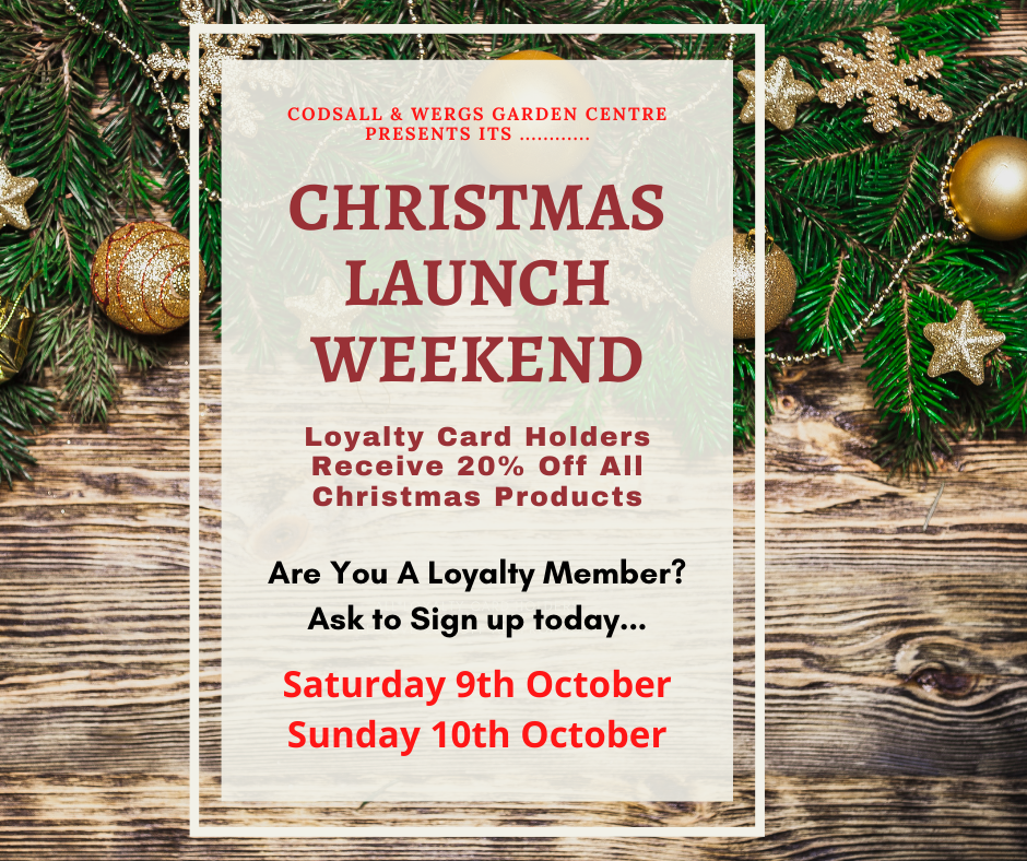 Christmas Launch Weekend ~October 9th & 10th